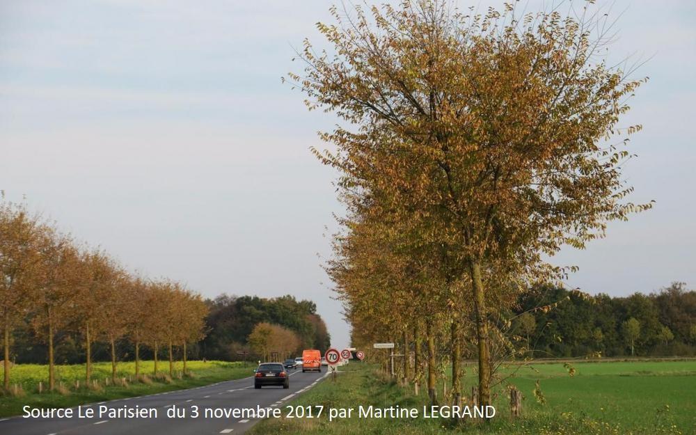 Moissy-Yèbles : les alignements d'arbres le long de routes départementales primées (article du journal Le PARISIEN par Marine LEGRAND)