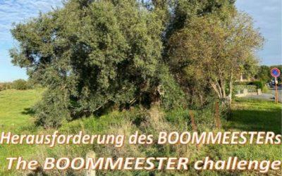 info : BOOMMEESTER  (Défi – Uitdaging – Herausforderung – Challenge)